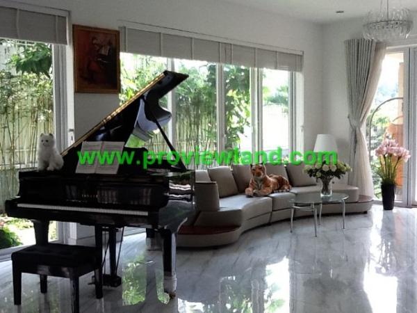 Cho thuê biệt thự Nam Phú Quận 7 giá cực sốc