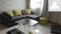BMC Apartment for rent in District 1, river view, Fully furnished