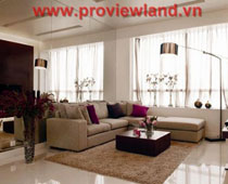 Saigon Pearl apartment for rent cheap price