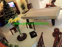 Villa for rent in Saigon Pearl